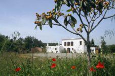 Villa en Sant Antoni de Portmany / San Antonio a 10 km de la playa
