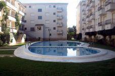 Apartamento en Alcoceber / Alcossebre para 4 personas con 1 habitación