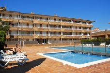Apartamento de 1 habitación a 500 m de la playa