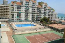 Apartamento para 3 personas en Peñiscola